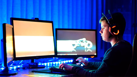 Image of young boy gaming on a computer.