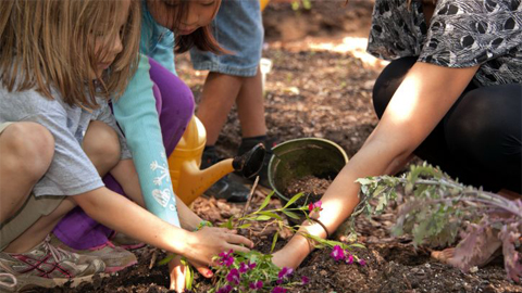 children planting flowers