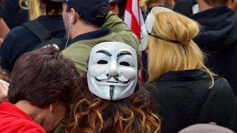 Image of protester wearing a Guy Fawkes mask.